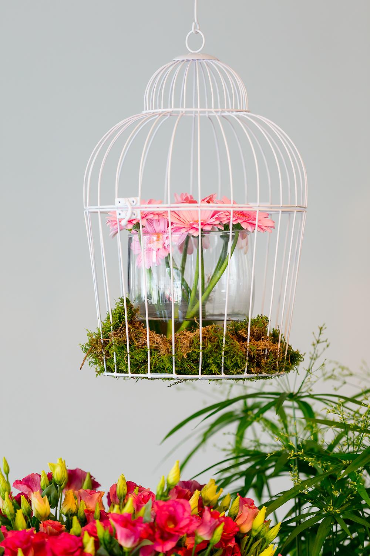 Decoratie van bloemen en planten