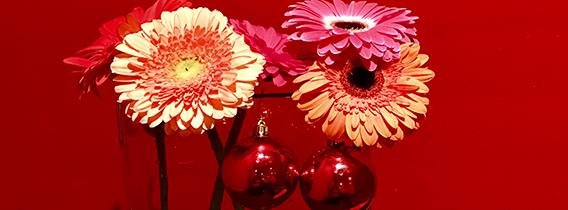 rood, bloemen, kerstballen